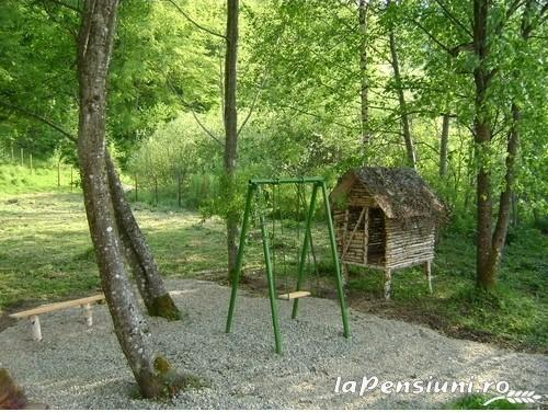 Casa cu Meri - accommodation in  Hateg Country (03)