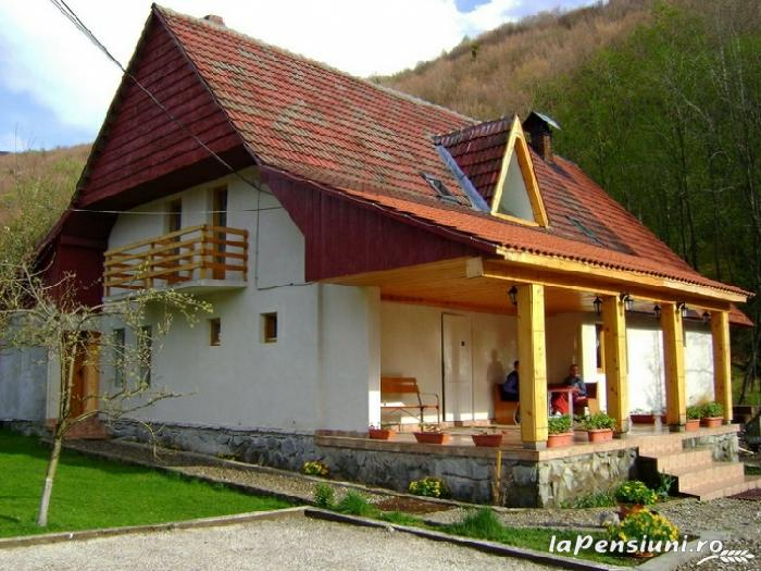 Casa cu Meri - accommodation in  Hateg Country (07)