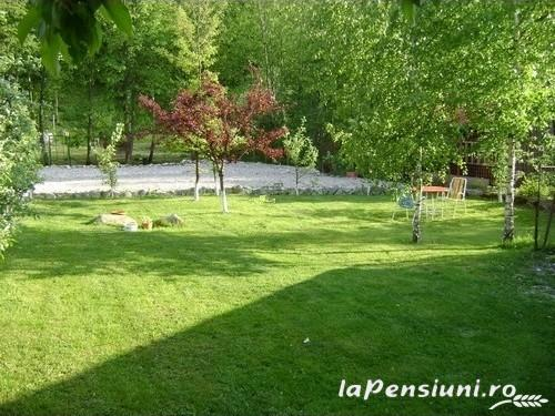 Casa cu Meri - accommodation in  Hateg Country (19)