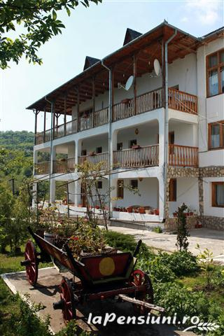 Casa cu Tei - accommodation in  Buzau Valley (15)