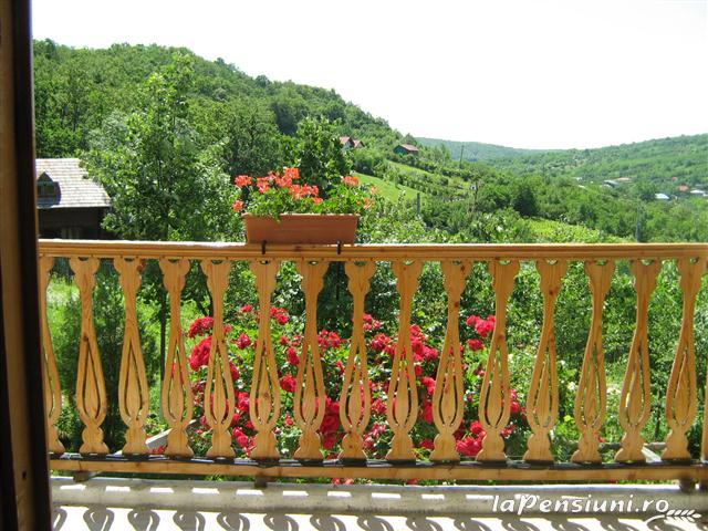 Casa cu Tei - accommodation in  Buzau Valley (23)