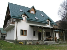 Vila Sucu - accommodation in  Hateg Country (01)