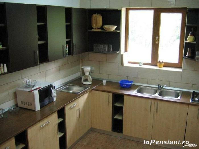 Vila Sucu - accommodation in  Hateg Country (02)