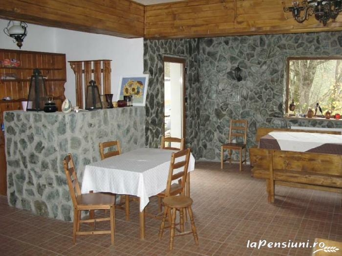 Vila Sucu - accommodation in  Hateg Country (04)
