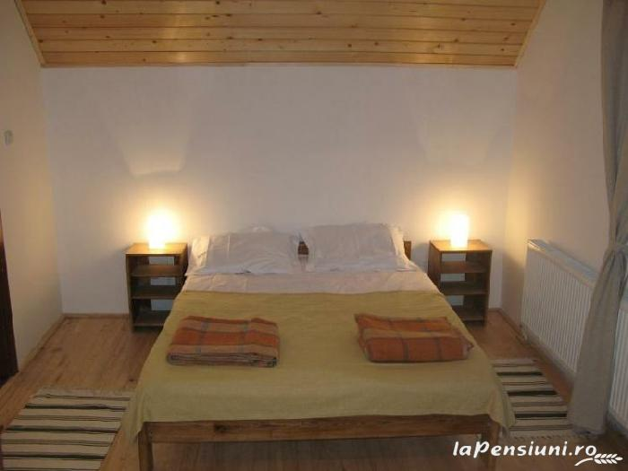 Vila Sucu - accommodation in  Hateg Country (07)
