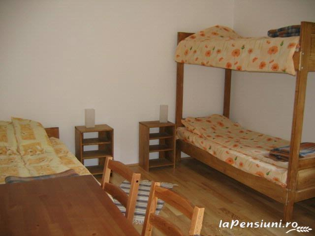 Vila Sucu - accommodation in  Hateg Country (09)
