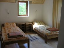 Vila Sucu - accommodation in  Hateg Country (16)
