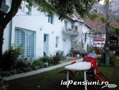 Casa Trapsa - accommodation in  Cernei Valley, Herculane (07)