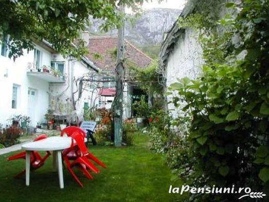 Casa Trapsa - accommodation in  Cernei Valley, Herculane (15)