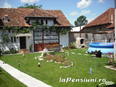 Pensiunea Soraly - accommodation in  Apuseni Mountains (01)