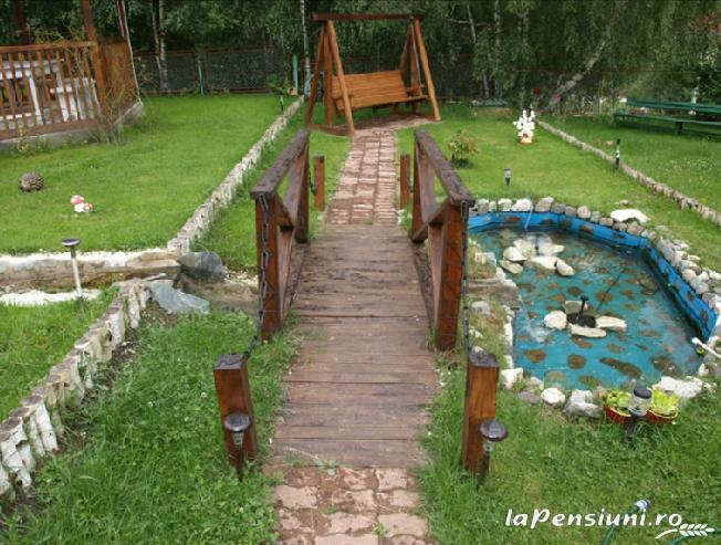Pensiunea Cara - accommodation in  Hateg Country (03)