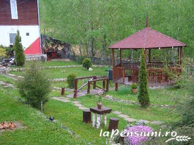 Pensiunea Cara - accommodation in  Hateg Country (06)