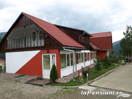 Pensiunea Cara - accommodation in  Hateg Country (12)