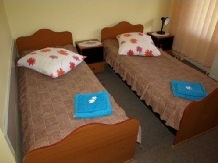 Pensiunea Cara - accommodation in  Hateg Country (15)