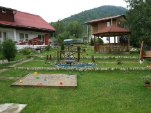 Pensiunea Cara - accommodation in  Hateg Country (16)