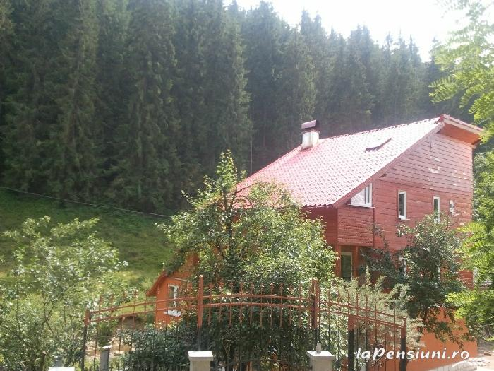 Pensiunea Lazea - accommodation in  Apuseni Mountains, Motilor Country, Arieseni (02)