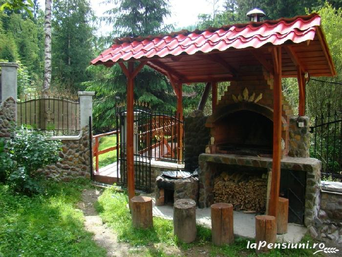 Pensiunea Lazea - accommodation in  Apuseni Mountains, Motilor Country, Arieseni (03)