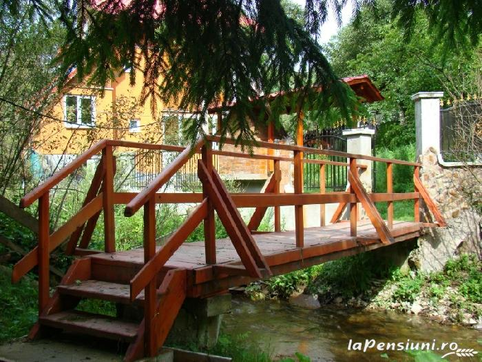 Pensiunea Lazea - accommodation in  Apuseni Mountains, Motilor Country, Arieseni (04)