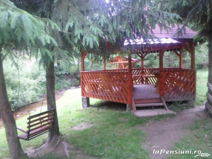Pensiunea Lazea - accommodation in  Apuseni Mountains, Motilor Country, Arieseni (17)