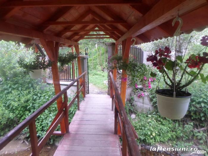 Pensiunea Lazea - accommodation in  Apuseni Mountains, Motilor Country, Arieseni (20)