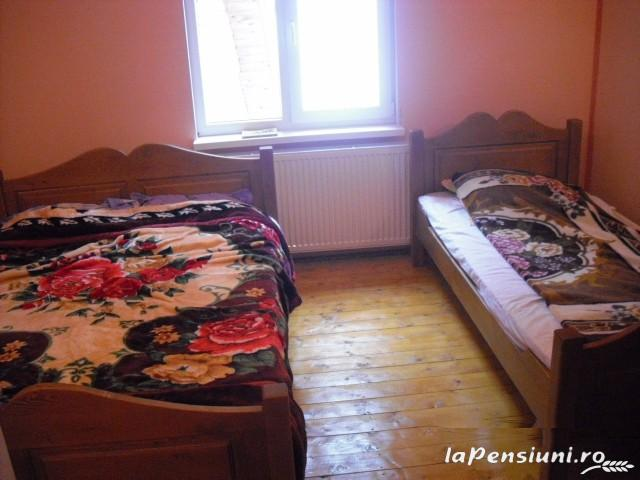 Pensiunea Lazea - accommodation in  Apuseni Mountains, Motilor Country, Arieseni (25)