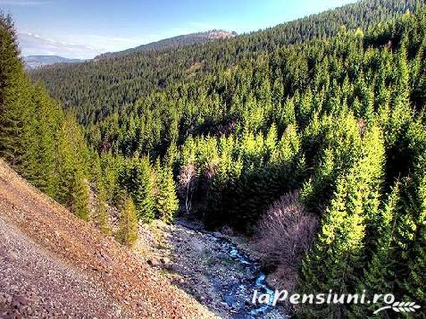Pensiunea Lazea - accommodation in  Apuseni Mountains, Motilor Country, Arieseni (Surrounding)