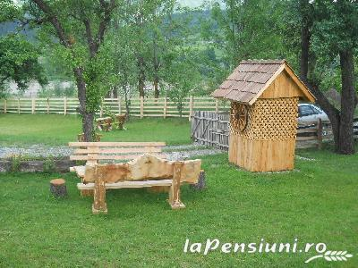 Pensiunea Codru - accommodation in  Apuseni Mountains, Motilor Country, Arieseni (02)