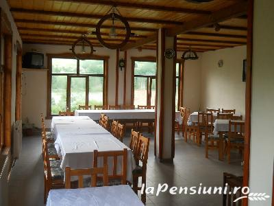 Pensiunea Codru - accommodation in  Apuseni Mountains, Motilor Country, Arieseni (04)