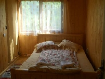 Pensiunea Codru - accommodation in  Apuseni Mountains, Motilor Country, Arieseni (05)