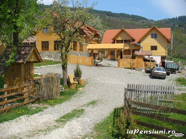 Pensiunea Codru - accommodation in  Apuseni Mountains, Motilor Country, Arieseni (08)