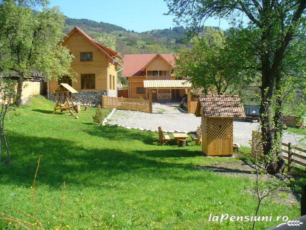 Pensiunea Codru - accommodation in  Apuseni Mountains, Motilor Country, Arieseni (12)