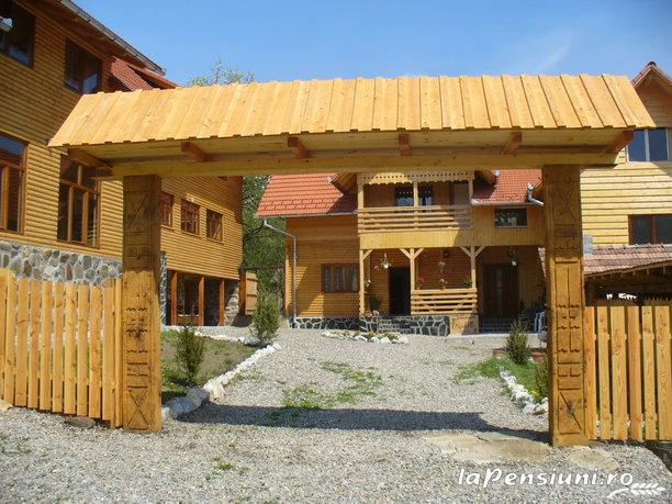Pensiunea Codru - accommodation in  Apuseni Mountains, Motilor Country, Arieseni (14)