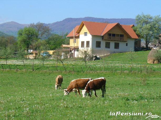 Pensiunea Codru - accommodation in  Apuseni Mountains, Motilor Country, Arieseni (15)