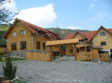 Pensiunea Codru - accommodation in  Apuseni Mountains, Motilor Country, Arieseni (18)