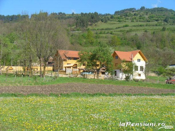 Pensiunea Codru - accommodation in  Apuseni Mountains, Motilor Country, Arieseni (19)