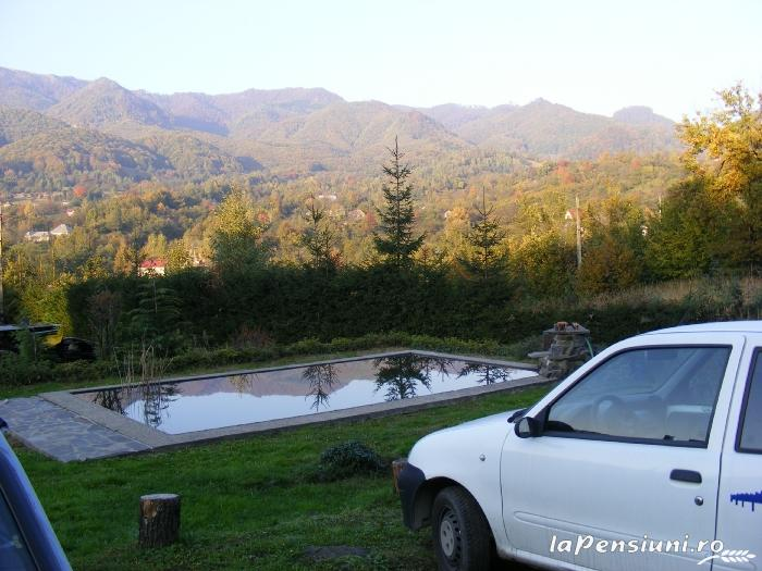 Cabana Chiuz - accommodation in  Maramures Country (03)