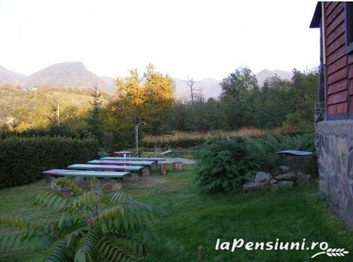 Cabana Chiuz - accommodation in  Maramures Country (04)