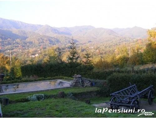 Cabana Chiuz - accommodation in  Maramures Country (06)
