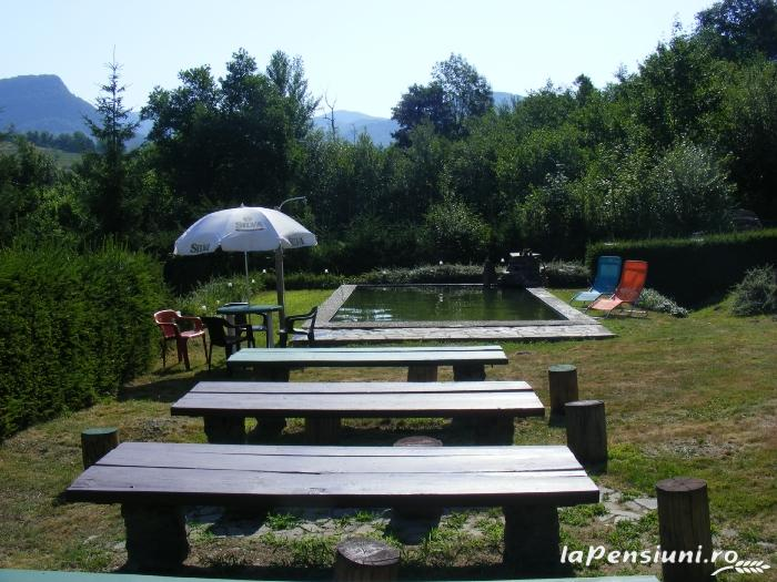 Cabana Chiuz - accommodation in  Maramures Country (09)