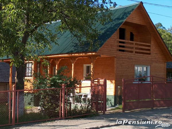 Pensiunea Adina - accommodation in  Maramures Country (01)
