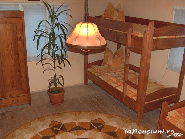 Pensiunea Adina - accommodation in  Maramures Country (02)