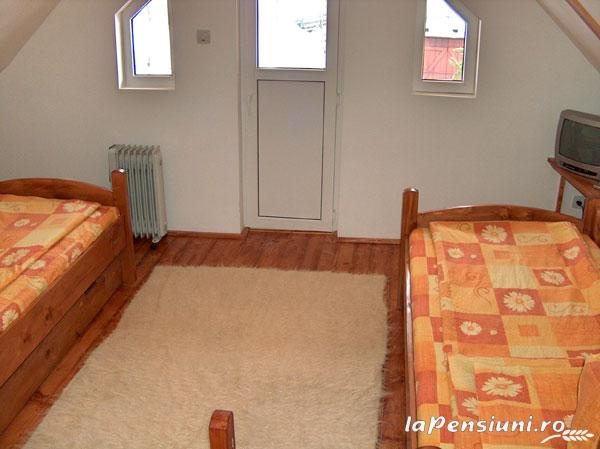 Pensiunea Adina - accommodation in  Maramures Country (06)