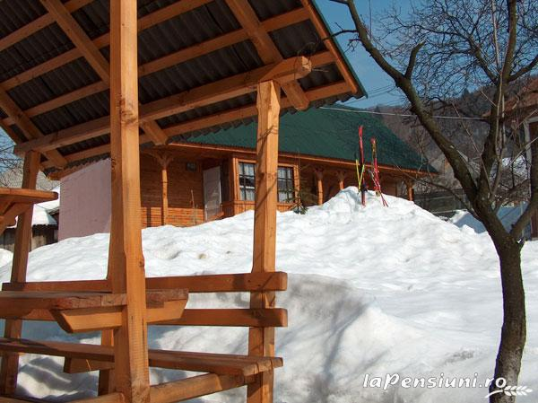 Pensiunea Adina - accommodation in  Maramures Country (10)