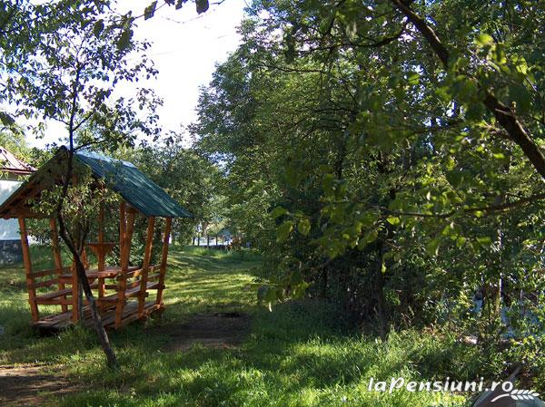 Pensiunea Adina - accommodation in  Maramures Country (11)