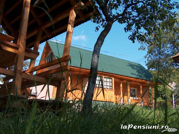 Pensiunea Adina - accommodation in  Maramures Country (13)