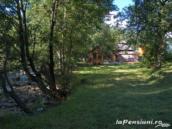 Pensiunea Adina - accommodation in  Maramures Country (16)