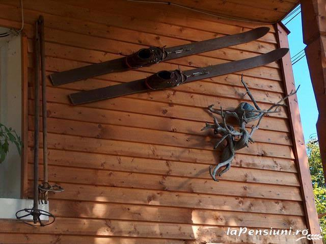 Pensiunea Adina - accommodation in  Maramures Country (19)