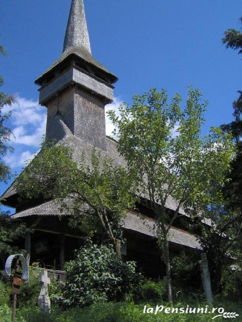 Pensiunea Ion de la Cruce - accommodation in  Maramures Country (Surrounding)