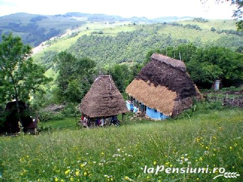 Pensiunea Aranyos - accommodation in  Apuseni Mountains (Surrounding)