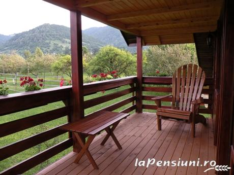 Pensiunea Magnolia - accommodation in  Maramures Country (08)